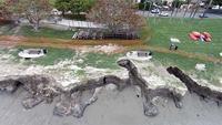 Erosion Repair 2016