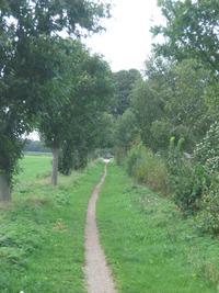 The path - Holland
