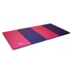 Nastia Liukin Pink And Purple Tumbling Mat 4ft x 6ft