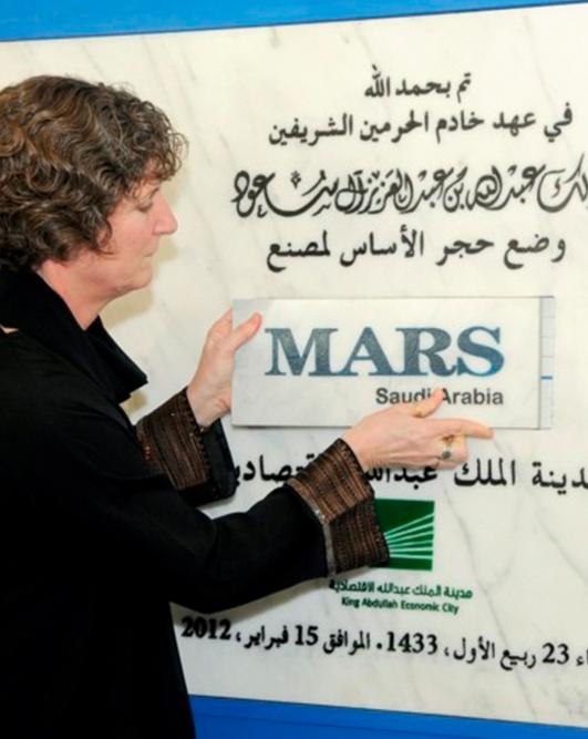 2014-mars-saudi-arabia