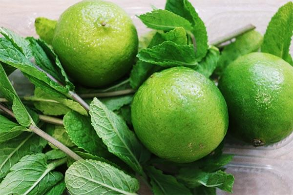 a close up photo of three limes and their foliage