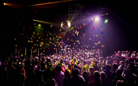 Butterflies fall over the crowd at The Donkey Show.