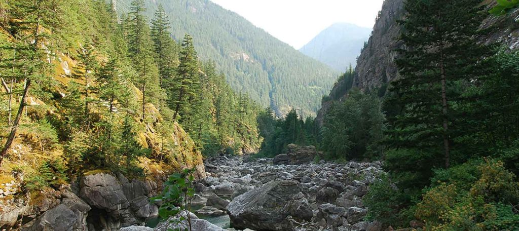 "Skagit River ""bypass"" | Rich Bowers"