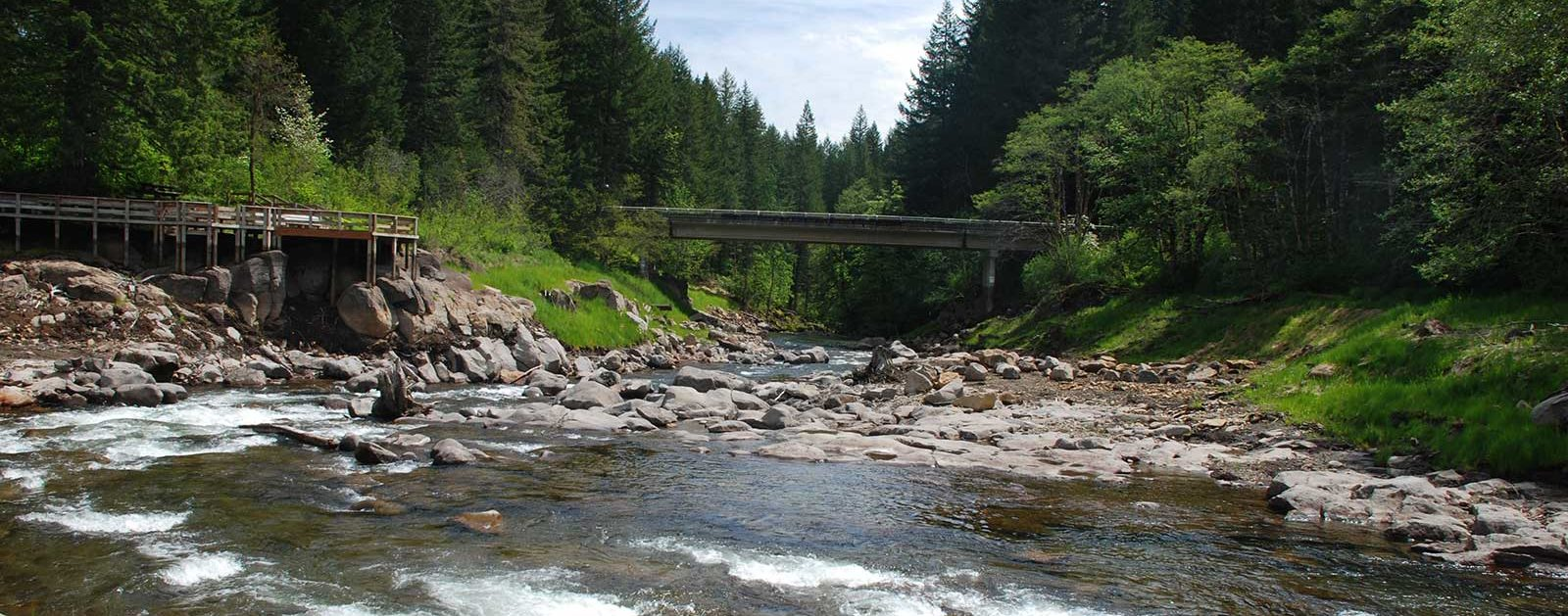 Trout Creek after Hemlock dam removal | Thomas O'Keefe
