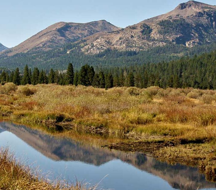 Mountain Meadows and Clean Water Supplies | American Rivers