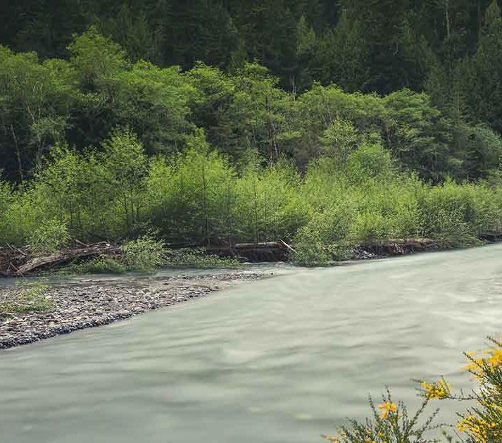 White River | American Rivers