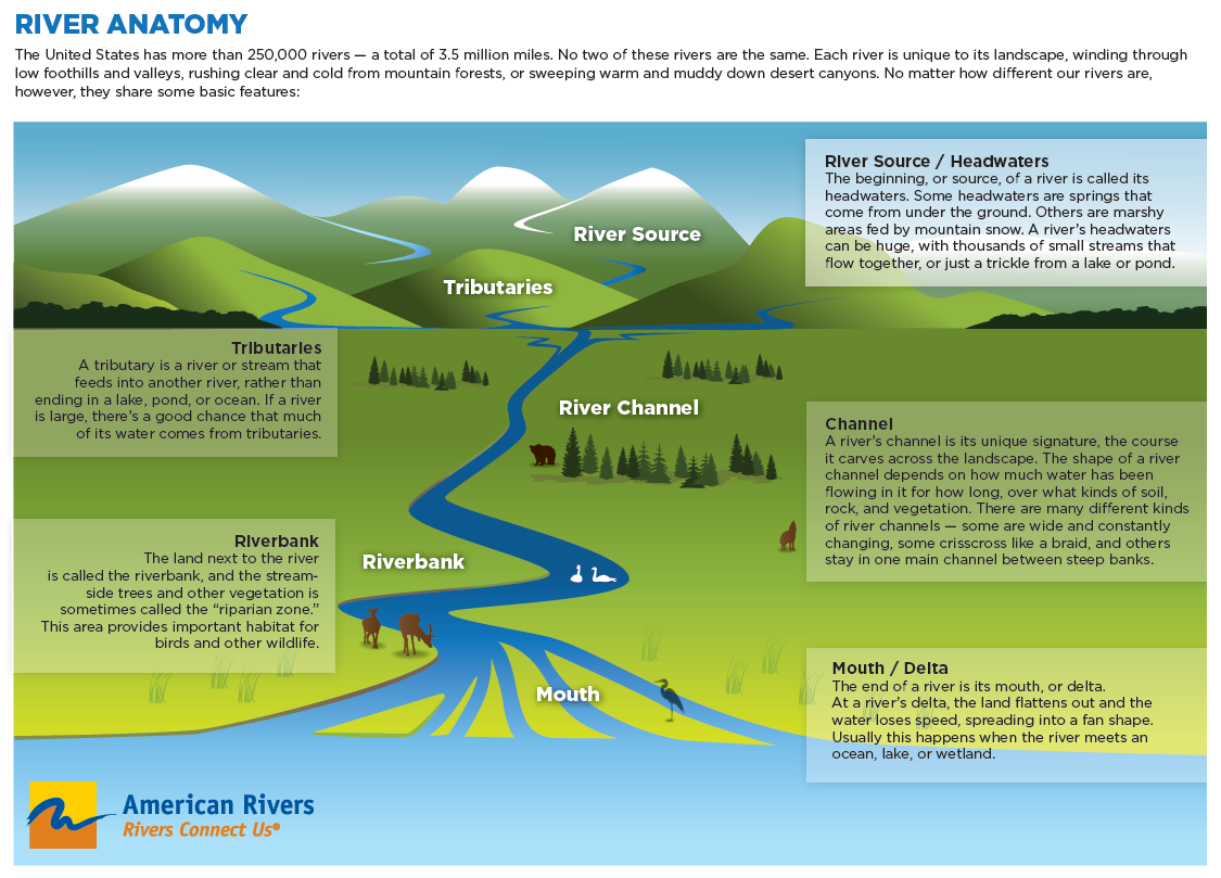 parts of river system diagram