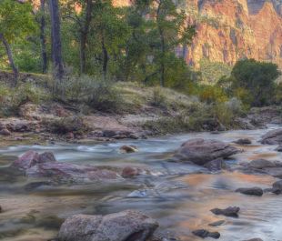 The Virgin River in Zion National Park, Utah. | Photo: Diana Robinson, flickrCC