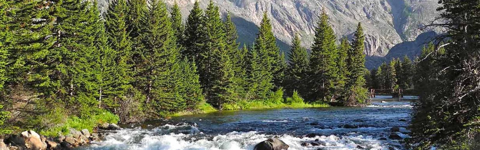 East-Rosebud-Creek-MT-credit-Michael-Fiebig-header
