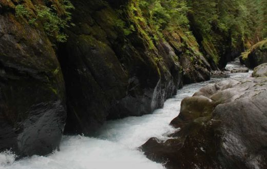 Flume rapid in the Quinault Gorge in Olympic National Park | Thomas OKeefe