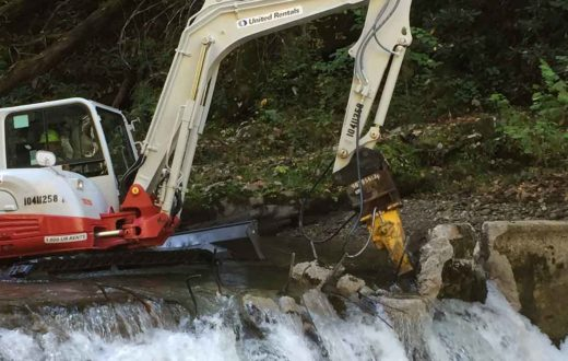 Citico Creek dam removal | Gerrit Jobsis