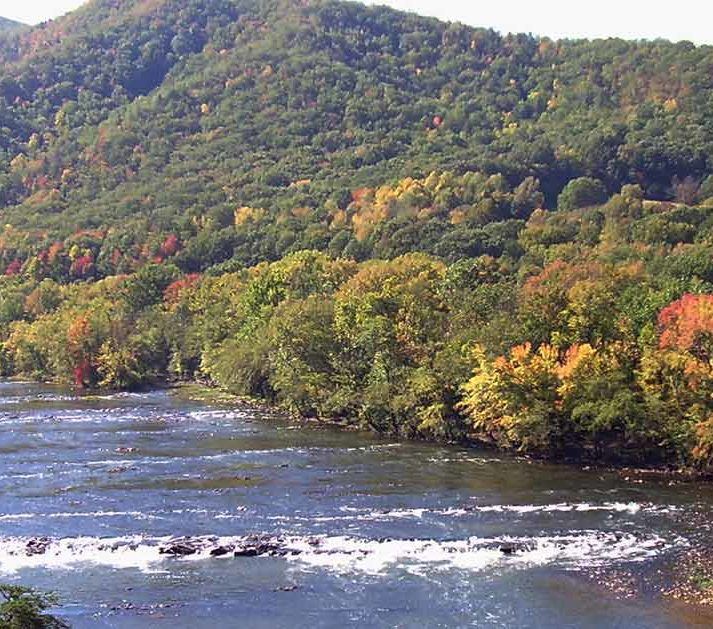 9 Top River Trips in North Carolina for Wildlife | American