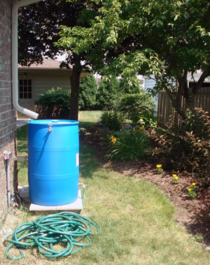 Rain Gardens Are An Attractive Way To Collect Runoff And Encourage  Groundwater Recharge.