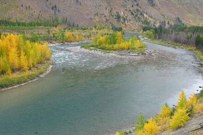 NF Flathead River [MT] | Scott Bosse