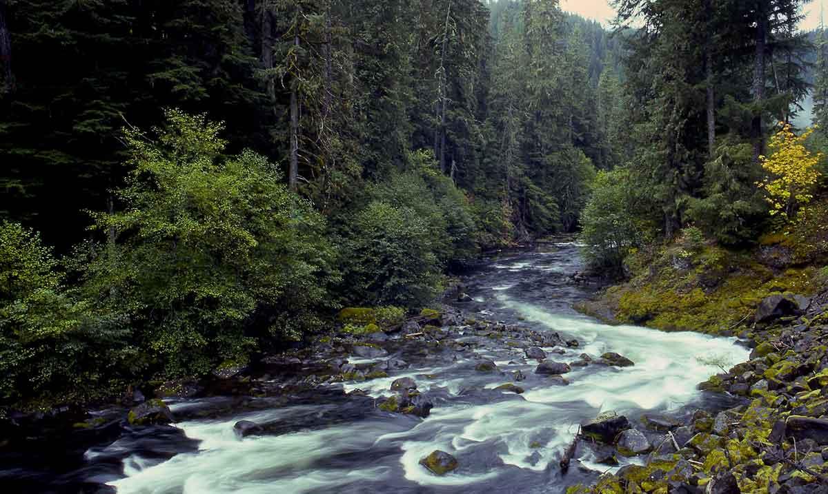 Clackamas River, OR | Tim Palmer USFWS