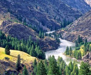 Salmon River, ID | Tim Palmer
