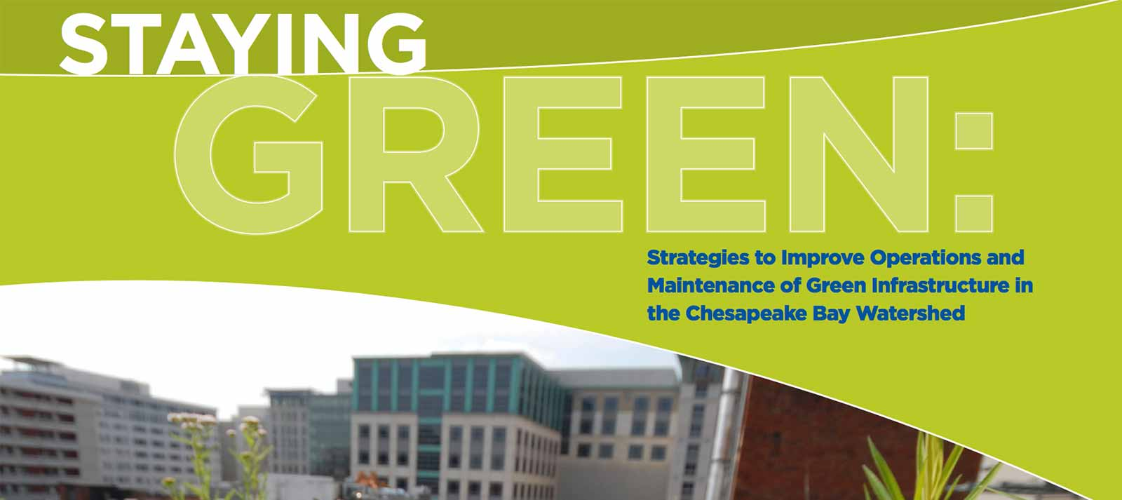 Staying Green: Joint Reports on Operations and Maintenance of Green  Infrastructure in the Chesapeake Bay | American Rivers