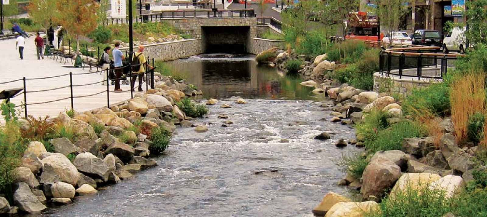 daylighting streams breathing life into urban streams and