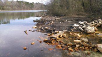 Acid Mine drainage from Maxine Mine. | Nelson Brook, Black Warrior Riverkeeper