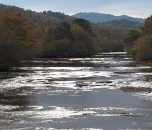 Little Tennessee River | U.S. Fish and Wildlife Service Southeast Region