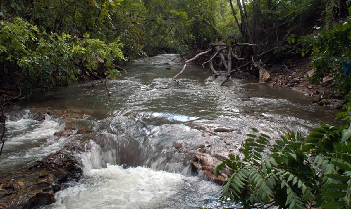 Avondale Creek   Black Warrior Riverkeeper