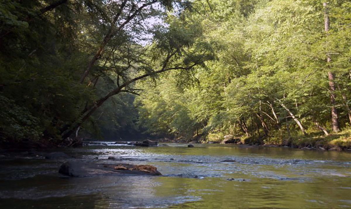 Blackwater Creek | Black Warrior Riverkeeper