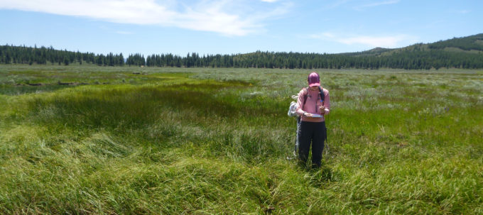 Examining Sardine Valley in the Truckee River watershed | Max Odland