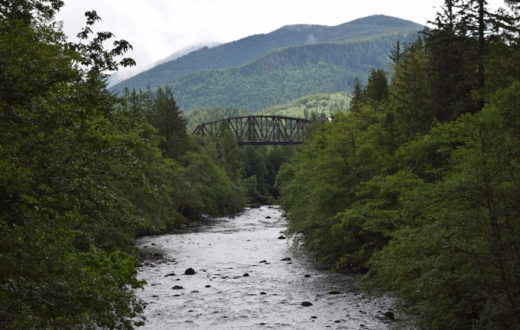 Green-Duwamish River | Washington Environmental Coucil