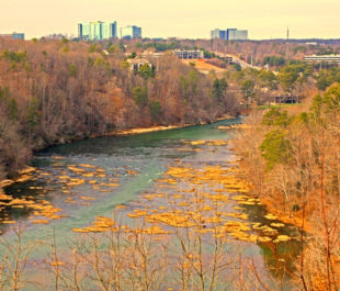 The Chattahoochee River | Alan Cressler