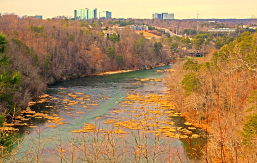 The Chattahoochee River | Alan Cressler