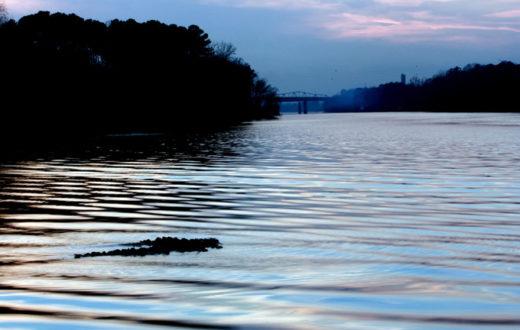 Black Warrior River   David Smith