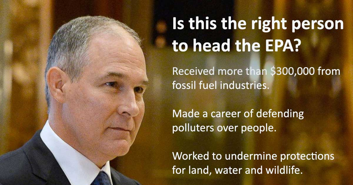 Image result for scott pruitt vote
