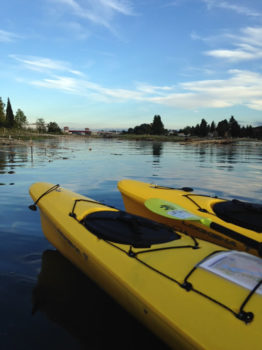 Kayaks on the Duwamish River. | King County Natural Resources and Parks