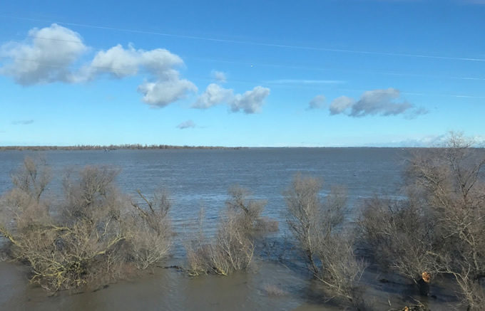 The Yolo Bypass from the train window. | John Cain