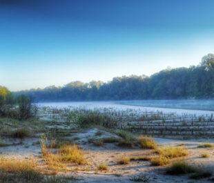 Pascagoula River, Mississippi   Brian Carlisle