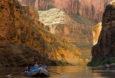 Canyon Gold | Ken Neubecker