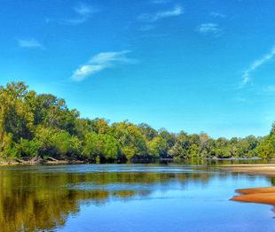 Pascagoula River   Brian Carlisle