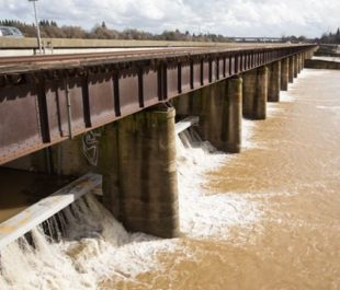 The Sacramento Weir that diverts water from the Sacramento River to the Yolo Bypass. | Andrew Nixon