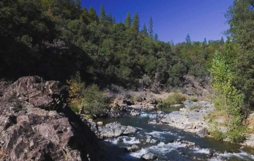 Bear River, CA | Voice of the Bear River