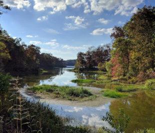 Black Warrior River, Arcola, Alabama.   Tim Gage
