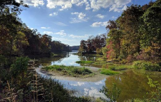 Black Warrior River, Arcola, Alabama. | Tim Gage