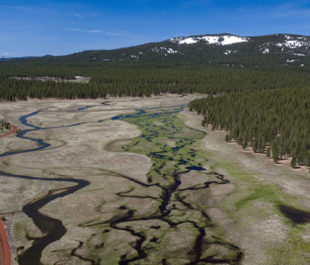 Confluence Meadow. | Photo: Trout Unlimited/Drone Productions