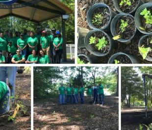 Keurig volunteers collaborate together to preserve the Suffolk, VA waterways.