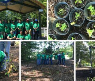 Keurig volunteers collaborate together to preserve the Suffolk, VA waterways.