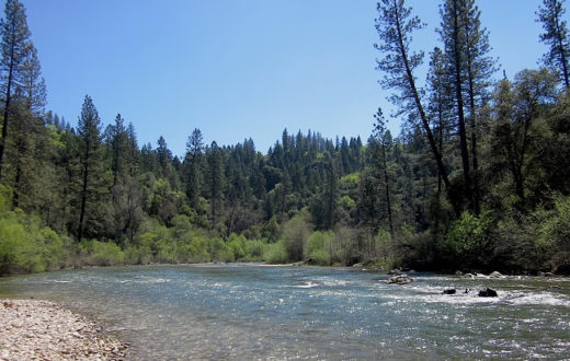 Bear River in Colfax, CA | Photo: Stephanie Curin