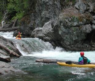 Cooper River Kayaking   Photo: Tom Ring