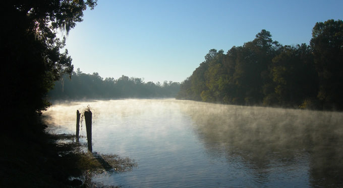 Cape Fear River | Photo: Jimmy Emerson DVM