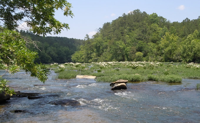 Falling In Love With Alabamas Rivers American Rivers - A long river