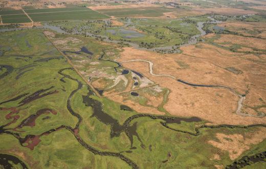 San Joaquin River | LightHawk