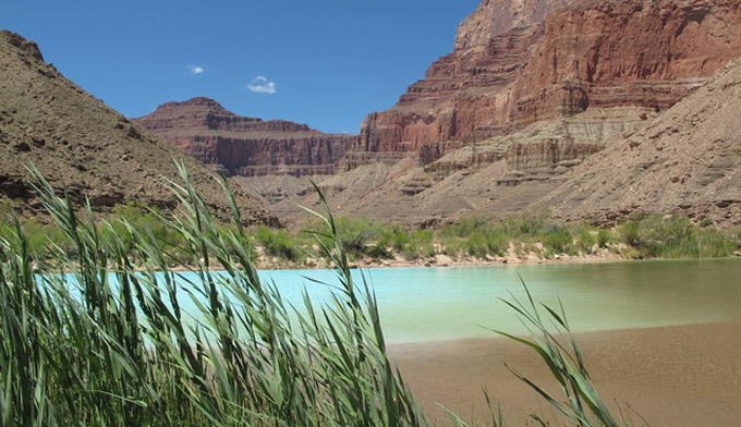 Lower Colorado Confluence | AML